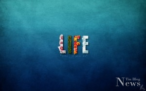 Life-wall-paper-1024x640
